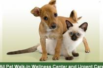 All Pet Walk-In Wellness Center and Urgent Care