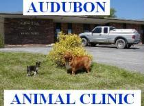 Audubon Animal Clinic