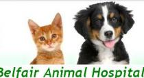 Belfair Animal Hospital