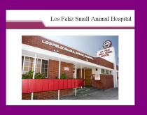 Los Feliz Small Animal Hospital